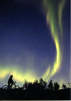Biking under aurora borealis