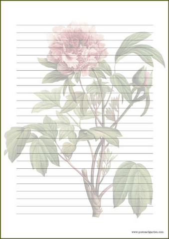 Vintage flowers - writing papers (A4, 10s) #1