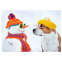Snowman and dog