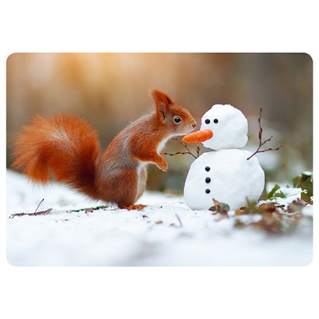 Squirrel and snowman