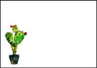 Cactus - envelope (C6) #1