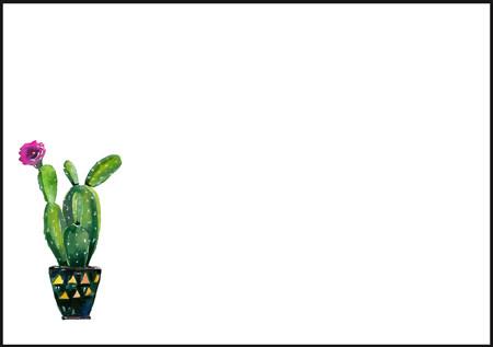 Kaktus - kirjekuori (C6) #2