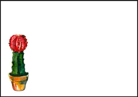 Cactus - envelope (C6) #3