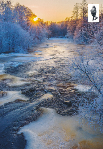 Winter rapids