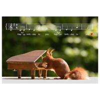 Squirrel and piano