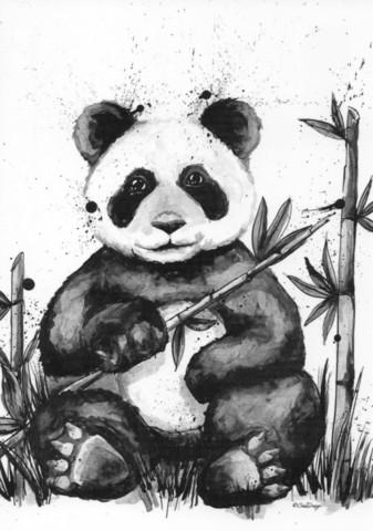 Wild animals - Panda
