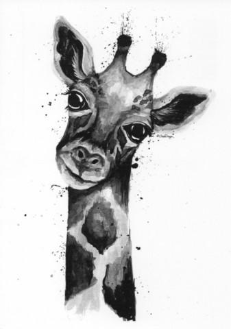 Wild animals - Giraffe
