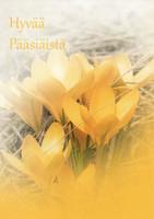 Hyvää pääsiäistä #8