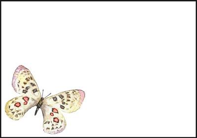 Perhonen - kirjekuori (C6) #1