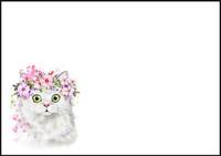 Kissa - kirjekuori (C6) #1