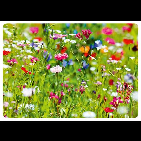 Kesäiset kukat #2