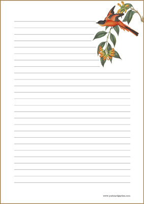 Lintu - kirjepaperit (A5, 10s) #2