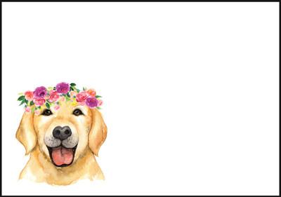 Koira - kirjekuori (C6) #2