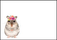 Hamsteri - kirjekuori (C6) #1