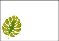 Leaf - envelope (C6) #1