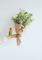Parrot and bouquet