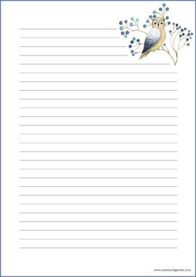 Pöllö - kirjepaperit (A4, 10s) #3