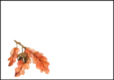 Autumn branch - envelope (C6) #2