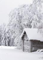 Suomi-Finland snow landscape #10