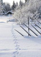 Suomi-Finland snow landscape #11