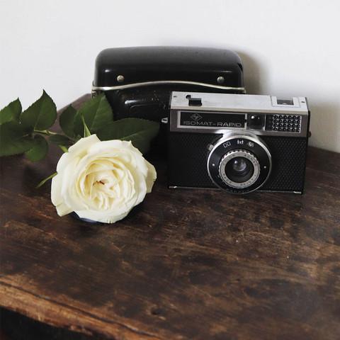 Kamera ja ruusu (14x14cm)