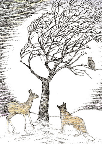 Fox, deer and owl