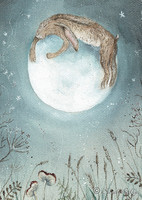 Hare on the moon