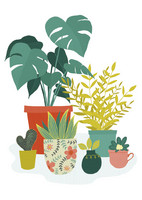 Green plants in pots