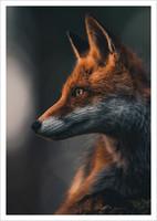 Konsta Punkka - Fox #2