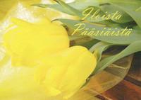 Happy Easter - yellow tulips