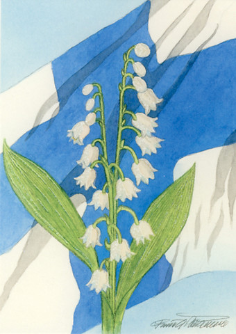 Flag of Finland and lily of the valley