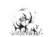 Kotieläimet - Lammas