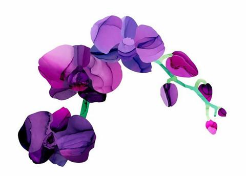 Utuliini - Orkidea, you so pretty