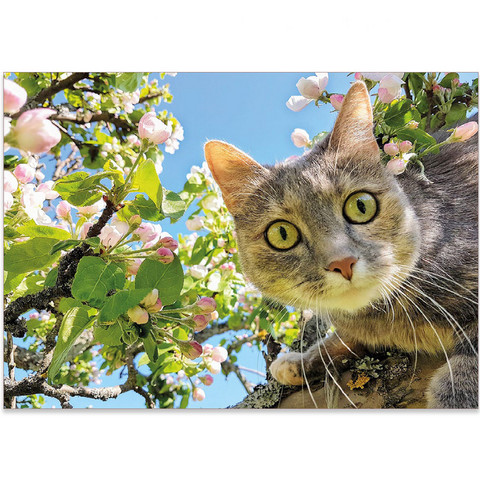 Viiksekäs omenapuussa