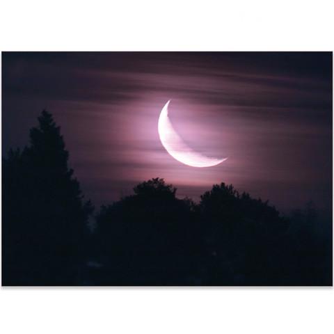 Moonlight - September