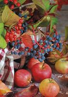 Omenat ja marjat