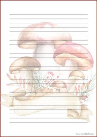 Sienet - kirjepaperit (A5, 10s) #1