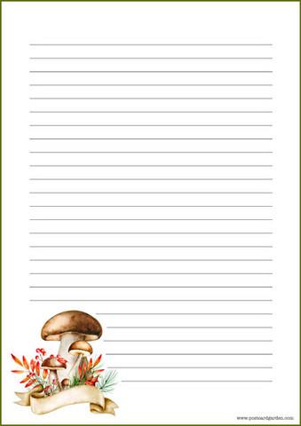 Sienet - kirjepaperit (A5, 10s) #2
