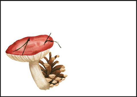 Sieni ja käpy - kirjekuori (C6) #1