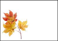Autumn leaves - envelope (C6) #4