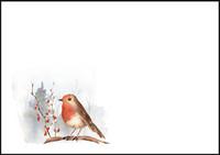 Robin - envelope (C6) #1