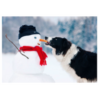 Dog and snow man
