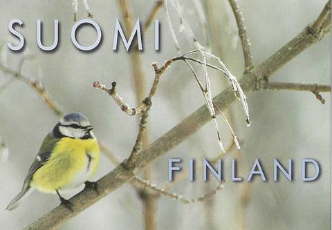 Sinitiainen (Suomi-Finland)