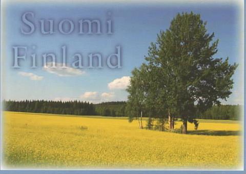 Suomi-Finland peltomaisema #2