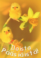 Happy easter little chicks