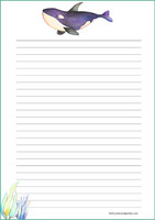 Killer whale - writing papers (A4, 10s)