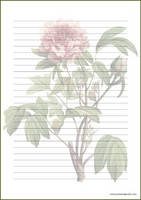 Vintage flower - writing papers (A4, 10s) #1