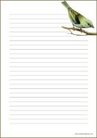 Lintu - kirjepaperit (A5, 10s) #1