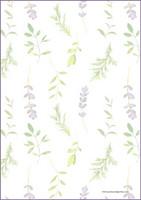 Kasvit - kirjepaperit (A4, 10s) #1