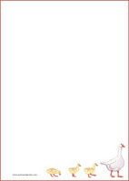 Hanhi - kirjepaperit (A5, 10s) #1